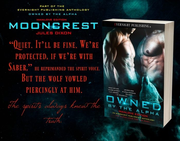 Mooncrest by Jules Dixon from OWNED BY THE ALPHA MANLOVE